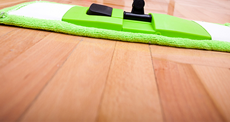 care and maintenance of timber floors